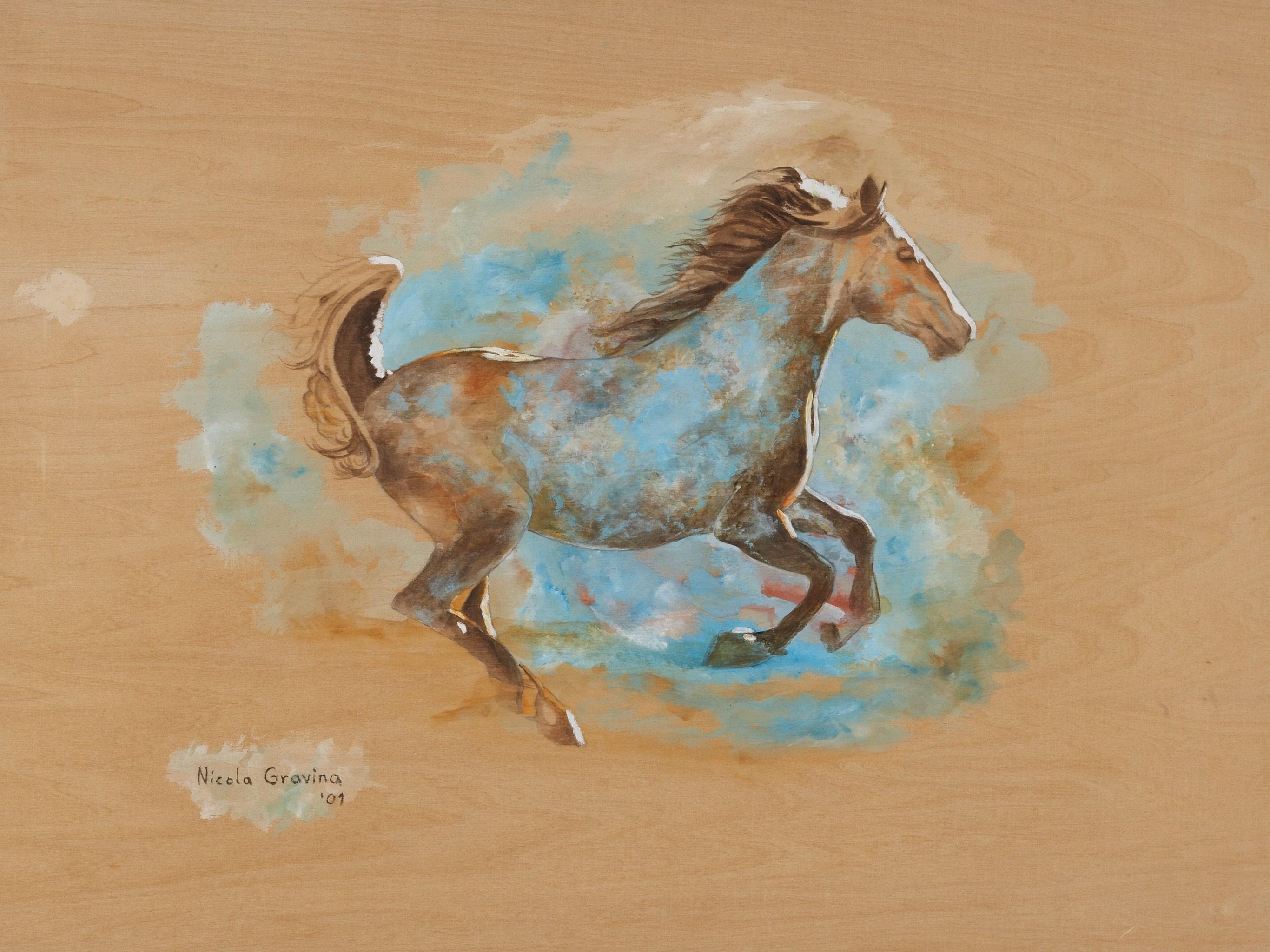 Cavallo Colorato – Farbenpferd